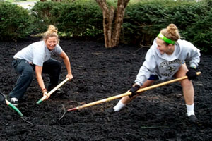 Mulch Madness returns for campus spring cleaning