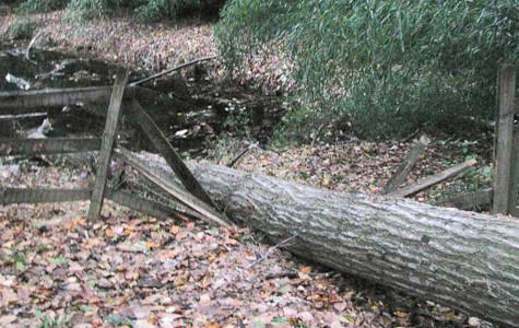Hurricane Sandy causes school closings, property damage