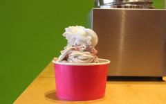 Food Fight: Yogo Crazy vs. Sweet Frog