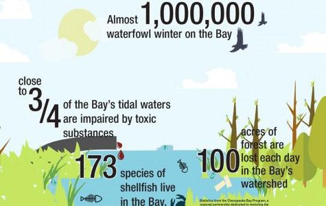 Patriot Perspective: The Bay needs help