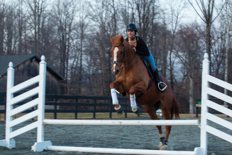 Claddagh Manor provides chance to saddle up