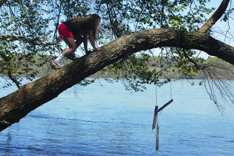 Katie Sullivan, In-Focus Editor, climbs a tree over a lake in Susquehanna State Park. The park, located north of Havre de Grace, Md., is the perfect place for an afternoon of adventure.