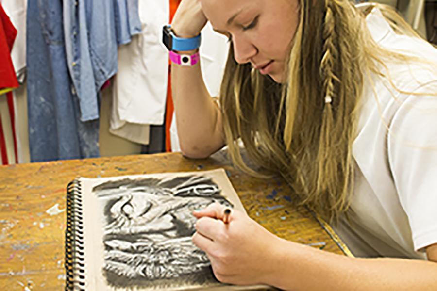 Sophomore Ashlee Kothenbeutel has been pursuing art ever since she was 10 years old. Kothenbeutel's biggest inspiration is her cousin.