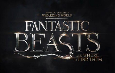 'Fantastic Beasts' brings the magic to America