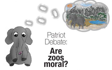 Patriot Debate: Are zoos moral?