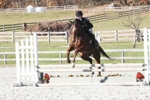 Equestrian team saddles up at home show