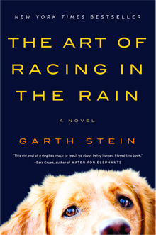 The Art of Racing in the Rain surpasses expectations