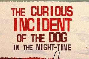 'The Curious Incident of the Dog in the Nighttime' levels the field for summer reading
