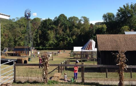 Quick Picks: Weber's offers fun fall festivites
