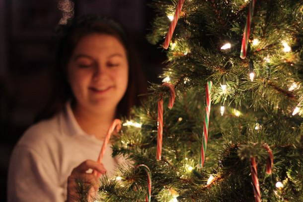 Junior Erin Sullivan hangs candy canes on the Christmas tree in the Chorus Room.  In addition, to celebrate the holidays, each teacher receives a poinsettia courtesy of the school.