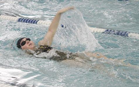 New swimmers dive into swimming season