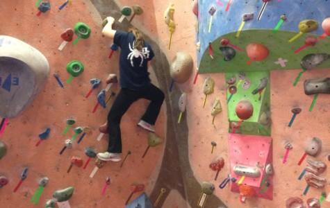 Quick Picks: Climb to new fun at Earth Treks