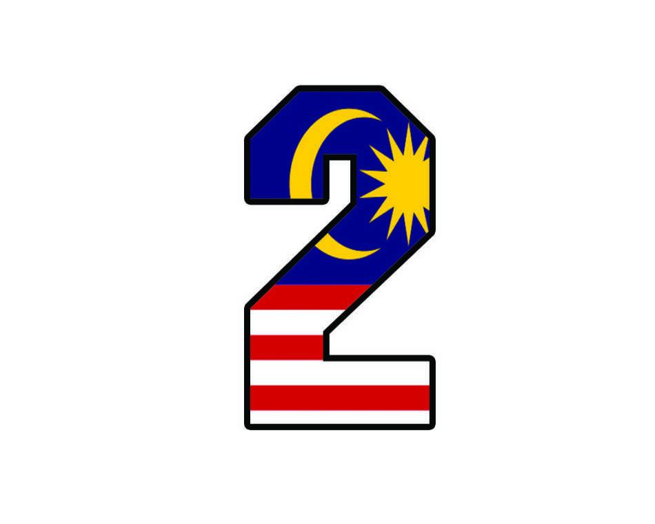 Malaysian+Flight