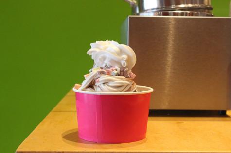 Food Fight: Yogo Crazy vs. Sweet Frog