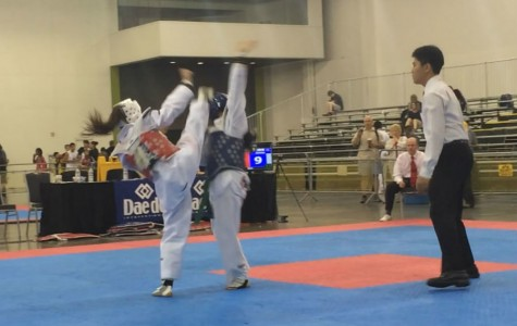 Sophomore wins gold in national taekwondo championships