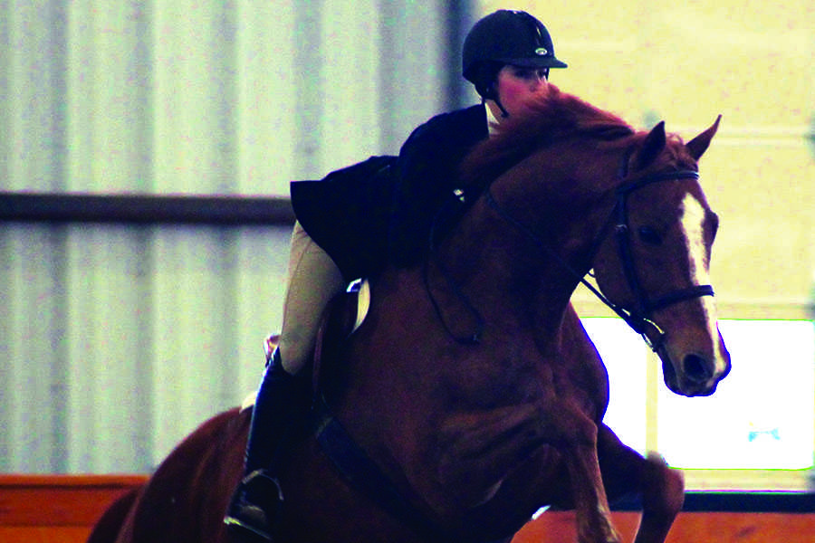 Sophomore Selina Petronelli and her horse, Parker, clear a hurdle at a competition. Petronelli has been captain of the equestrian team since freshman year.
