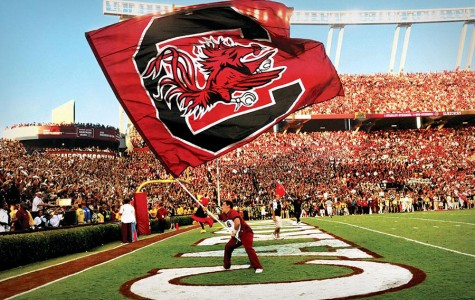 A student waves the University of South Carolina Gamecocks flag. Hundreds of thousands of people flock to the football stand each year during the football season.