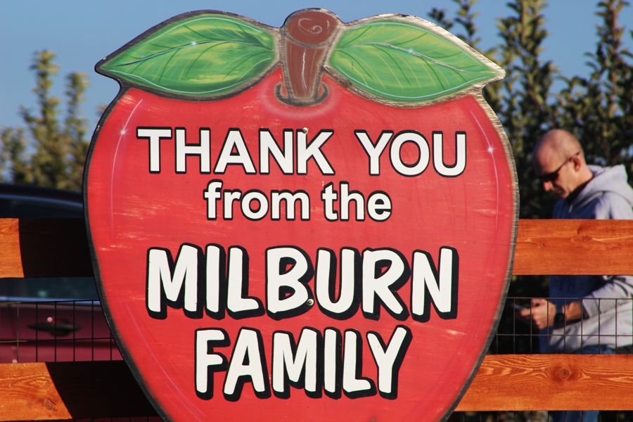 Milburn Orchards is located in Elkton, MD and attracts a variety of people. The orchard offers a unique experience for all people who visit, and it has aspects that appeal to everybody including bouncy houses, a petting zoo, acres of apple fields for picking, and their famous apple cider donuts.