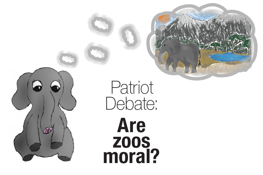 Patriot Debate: Are zoos moral?