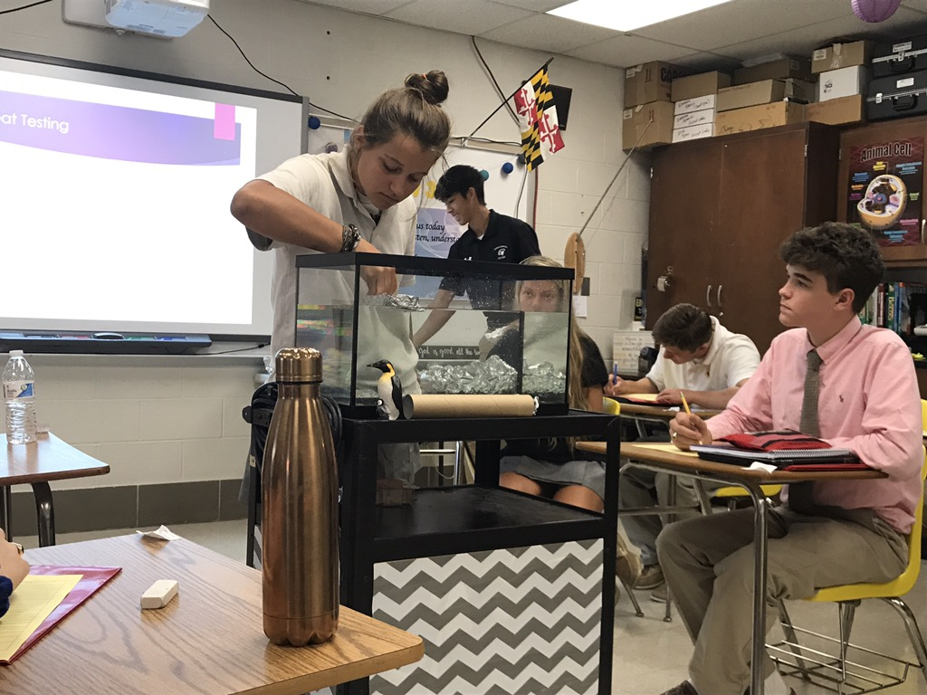 Senior Ellee Perri places pennies on top of a tinfoil boat during a Marine Biology class experiment on Friday, Sept. 1. After each student designed a boat, the ships were tested for buoyancy.