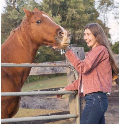 Kozera combines love of art & animals