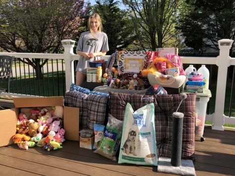 Spring's love for animals inspires project